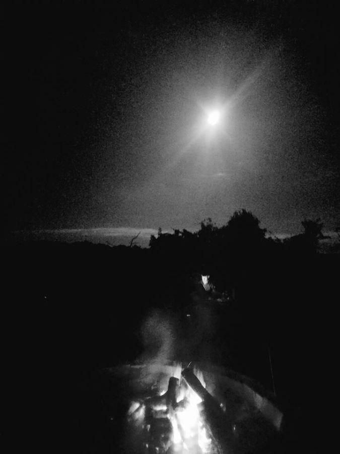 teresa's moon shot